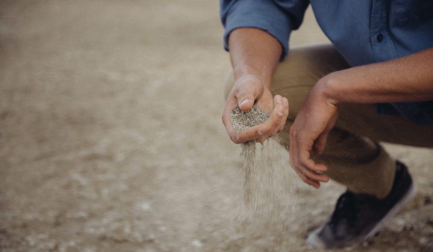Surveying the Soil